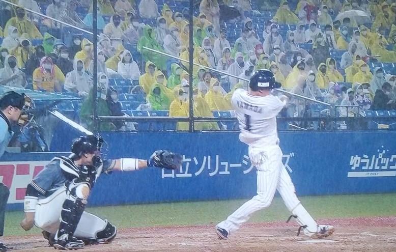 山田24号