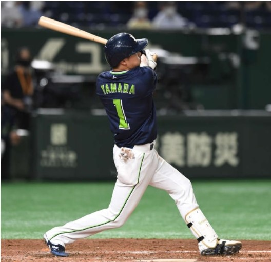 山田28号